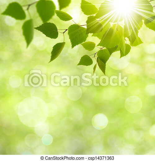 Abstract natural backgrounds with beauty bokeh - csp14371363
