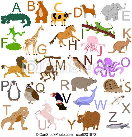 Animal alphabet - csp6231872