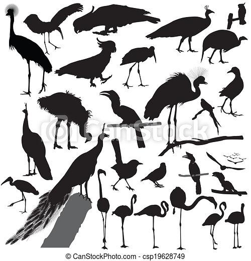 bird Silhouette set vector - csp19628749