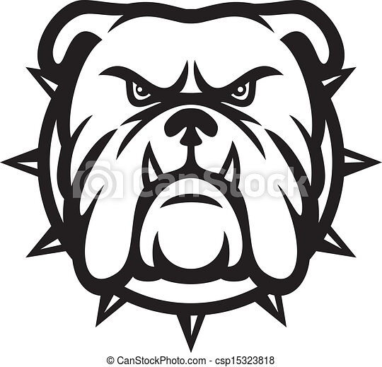 Bulldog head - csp15323818