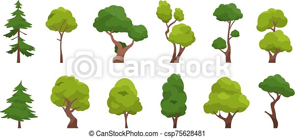 Cartoon tree. Simple flat forest flora, coniferous and deciduous trees, oak pine Christmas tree isolated plants. Vector set - csp75628481
