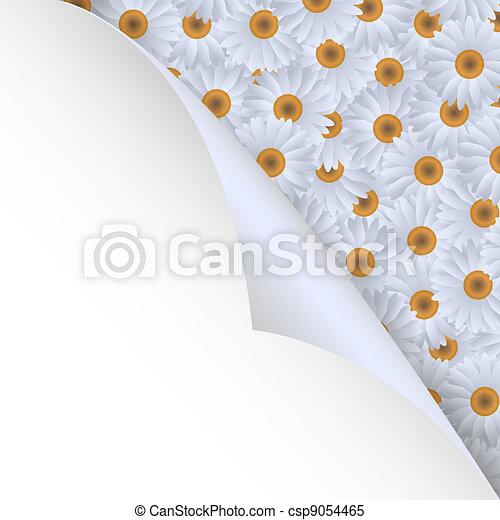 chamomiles and paper corner - csp9054465
