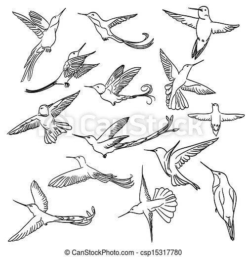 colibri drawing set made in line ar - csp15317780