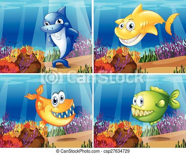Fish - csp27634729