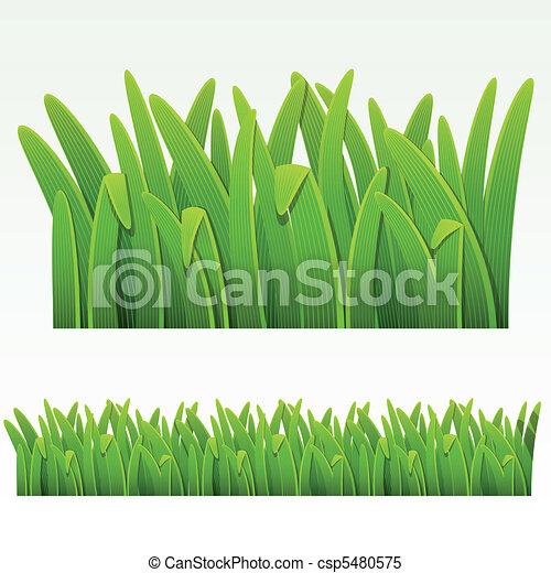 Grass border - csp5480575