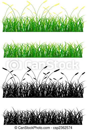 Grass - csp2362574
