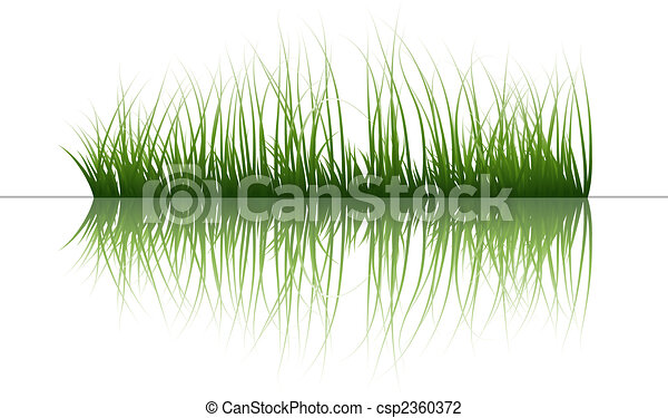 grass on water - csp2360372