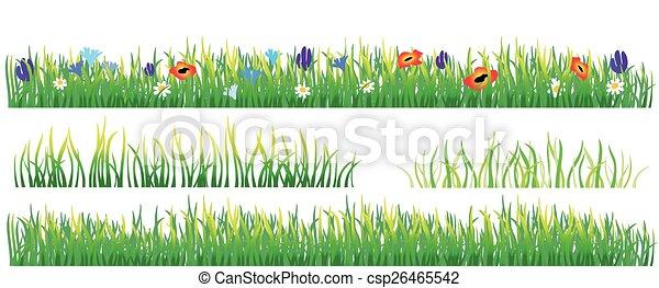 Green grass - csp26465542