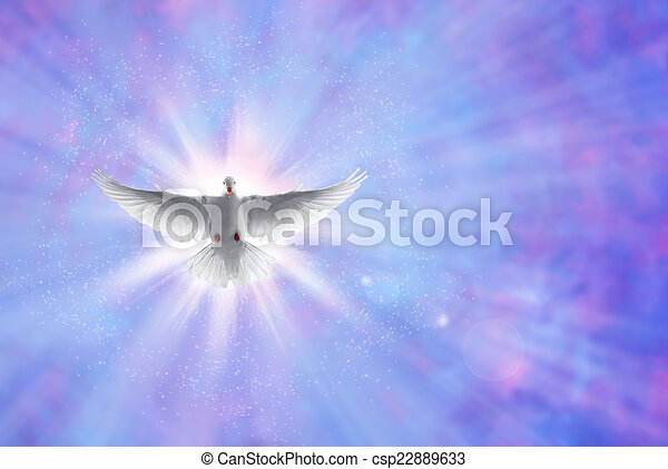 Holy spirit dove on shining sky with rays - csp22889633