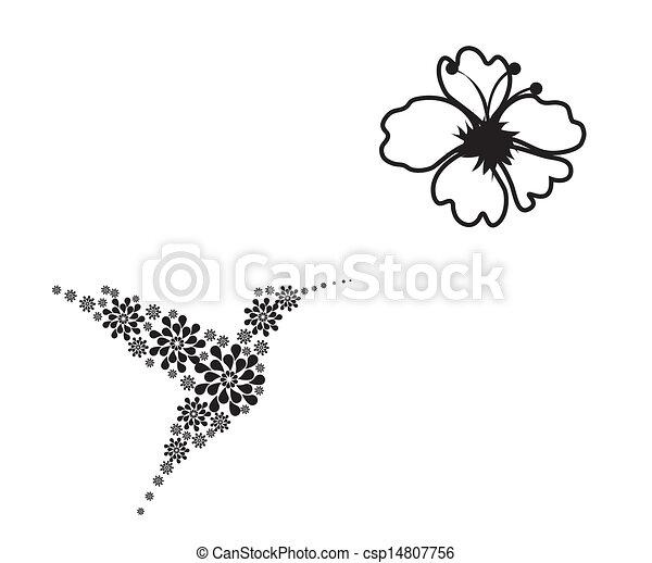 humming bird - csp14807756