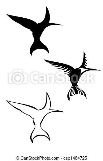 Humming bird - csp1484725