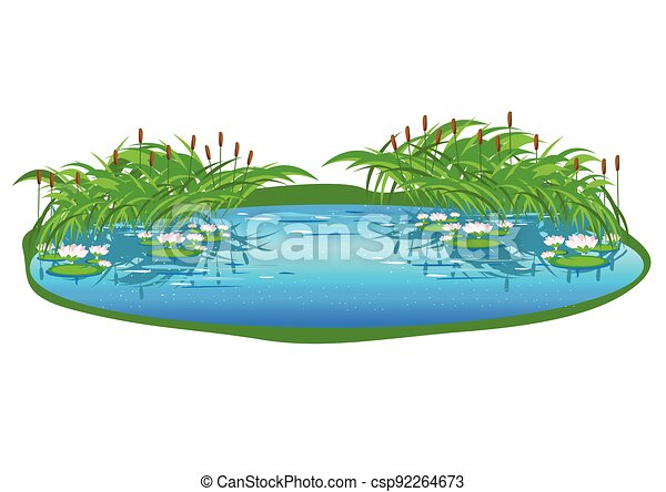 lake with reeds and water lilies - csp92264673