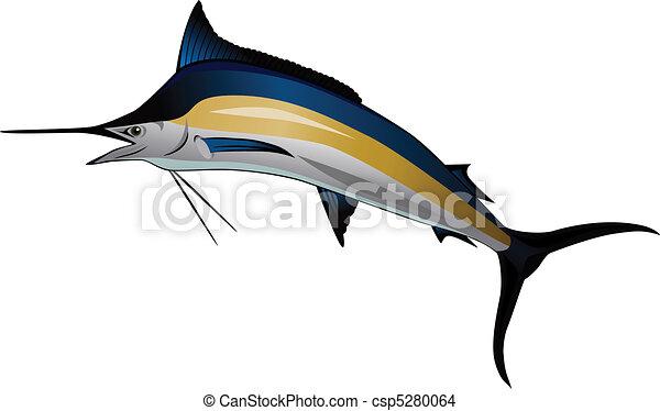 Marlin fish - csp5280064