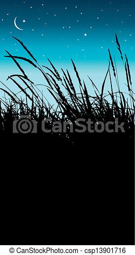 reeds - csp13901716