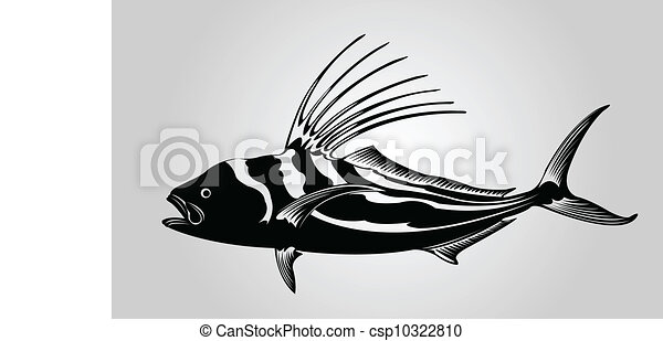 Rooster fish. - csp10322810