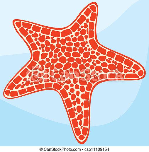 starfish - csp11109154