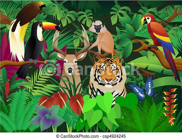 wild animal - csp4924245