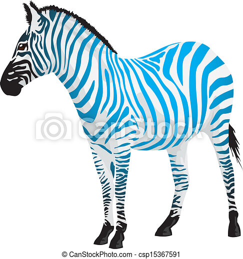 Zebra with strips of blue color. - csp15367591